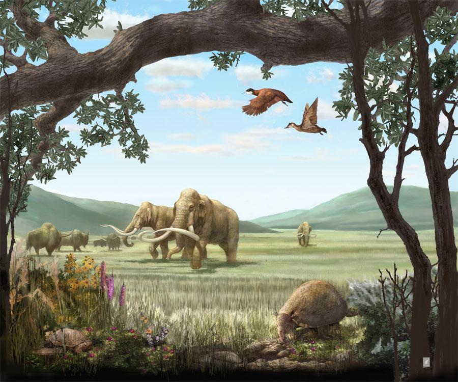 http://www.karencarr.com/auto_image/Karen_Carr_North_American_Pleistocene_Landscape.jpg