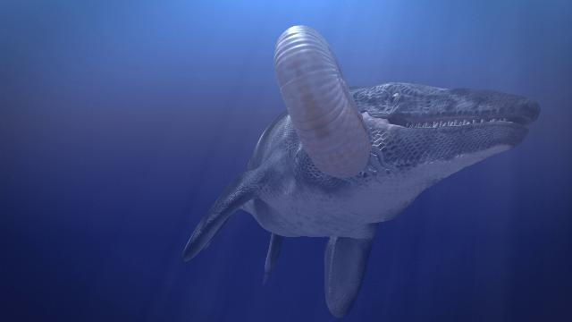 Animation: Cretaceous Marine Environment, for Witte Museum